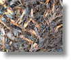 Premium Mulches